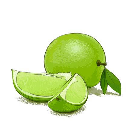 sliced fruit: Ripe limes with sliced pieces on white