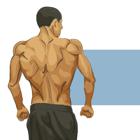 sexy muscular man: Fitness muscular man body illustration