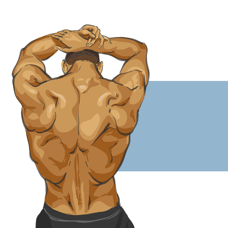 male model torso: Fitness muscular man body illustration