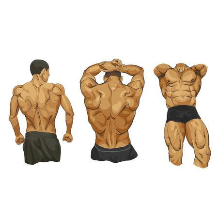 shirtless: Fitness muscular man body illustration