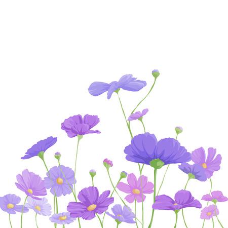 flores moradas: brillante fondo floral con flores de color púrpura