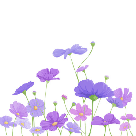 Bright floral background with purple flowers