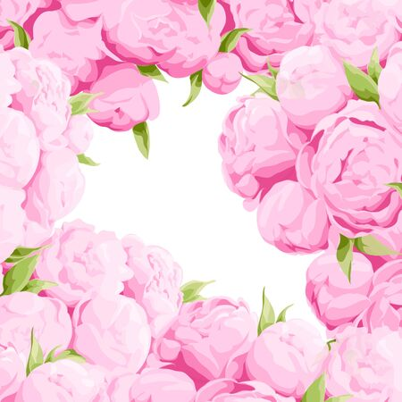 pink flowers: Bright colorful peonies background with green leaves Illustration