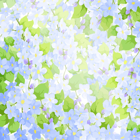 forget me not: Bright colorful forget me not background Illustration