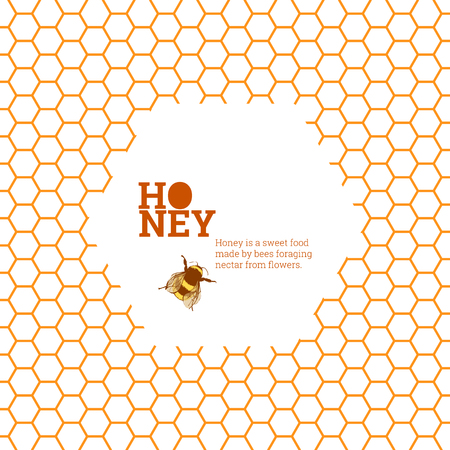 honeycombs: Honeycombs bright vector background illustration