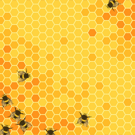 honeyed: Honeycombs bright vector background illustration