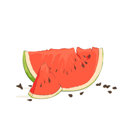 summertime: refreshing watermelon on a white background