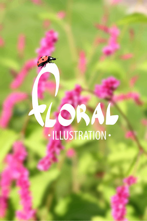 untouched: Beautiful Summer background blooming garden on a summer day Illustration