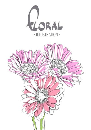 gerbera: Beautiful gerbera close-up on a white background with a place for your inscription