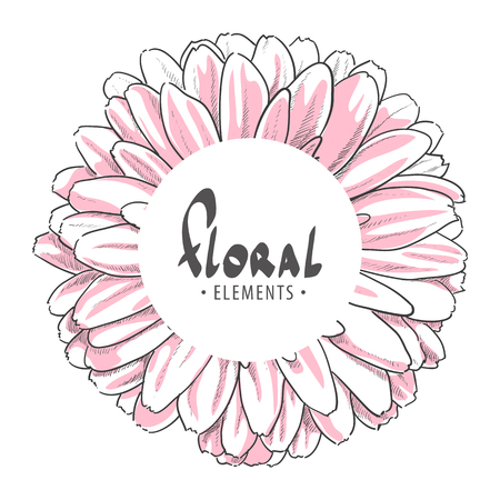 gerbera: Close up gerbera with white round for your text Illustration