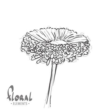 colorize: Sketch gerbera on a white background with a place for inscription and the ability to colorize