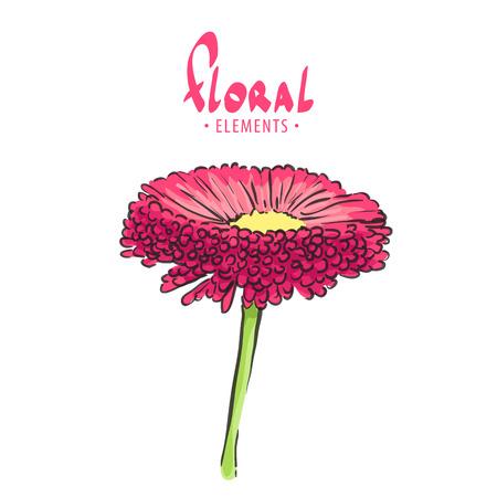 macro flowers: Bright vector flower on white background Illustration