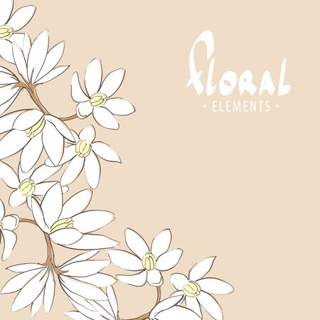 petal: Romantic floral background with white flowers on branch