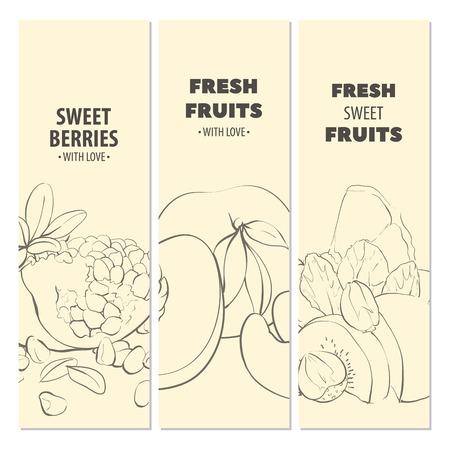 nectarine: Outline fresh ripe fruit light cards