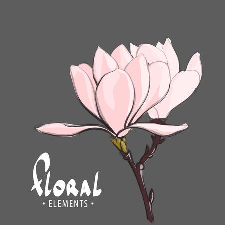 gift season: Sakura branch in the spring morning Illustration