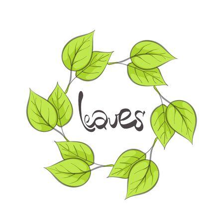 macro leaf: vector illustration of green leaves on white Illustration