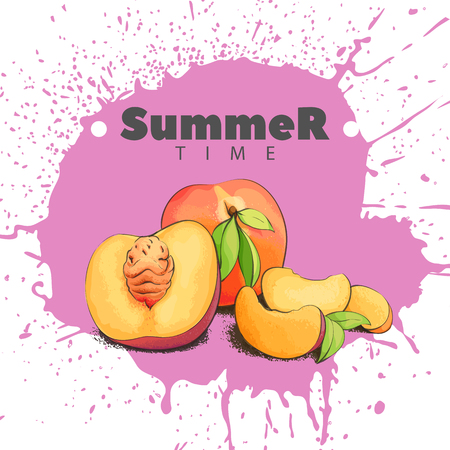 Summer peaches on a juicy background Illustration