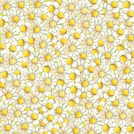 Many sunny daisies fill the entire background Illustration