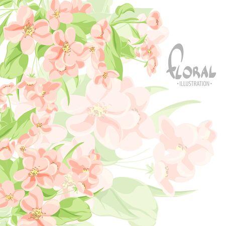 Flores delicadas del manzano en un fondo blanco con el lugar para su inscripción Ilustración de vector