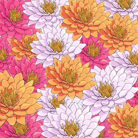 Bright background of beautiful chrysanthemums Illustration