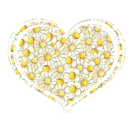 Delicate chamomiles in the shape of heart Illustration