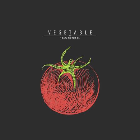 Hand drawn red tomato on black background Çizim