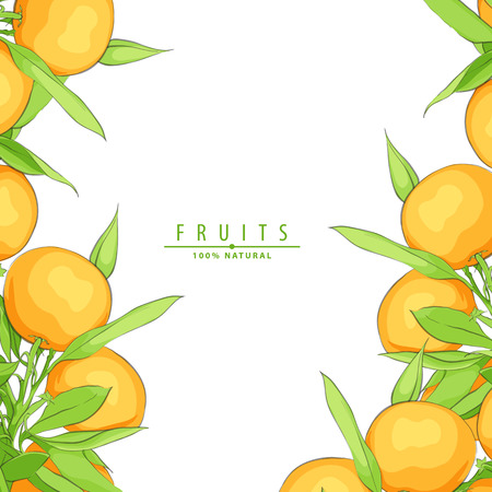 Ripe fresh oranges vector background illustration