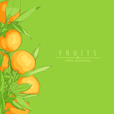 Ripe fresh oranges vector background illustration