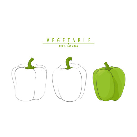 Vector illustration of fresh ripe peppers on white background