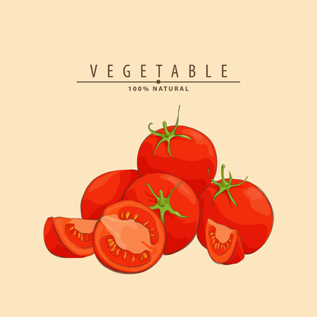 group of red fresh ripe tomatoes vector illustration
