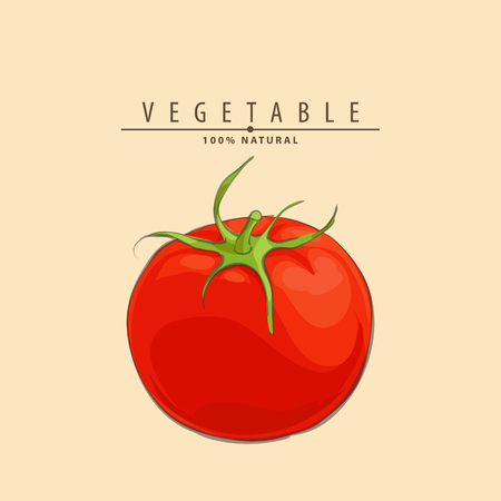 Close up bright red fresh tomatoe on light background Illustration