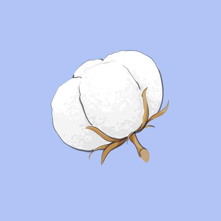 Vector illustration of delicate white cotton flower background