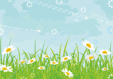 beautiful background with daisies butterflies sky arrows Stock Vector - 9808976