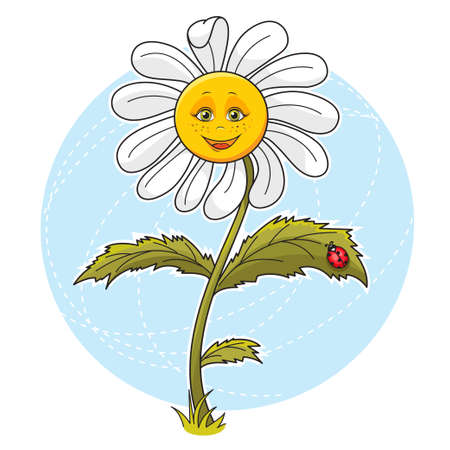 Cartoon illustration of beautiful cute Daisy flower  Illustration