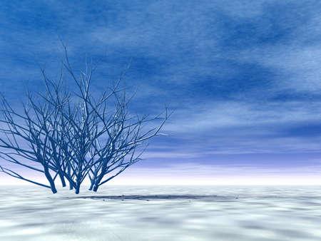 Winter scenery Stock Photo - 2109286