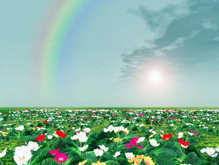 primula: Spring scenery. Primroses. Rainbow