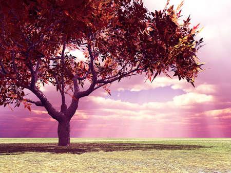 Wspaniałe krajobrazy jesieni