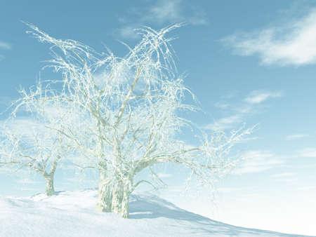 Blanco invierno  Foto de archivo - 3357932