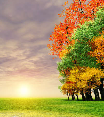 Wonderful autumn sunset Stock Photo