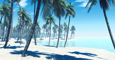 Tropical island Stock Photo - 4323856