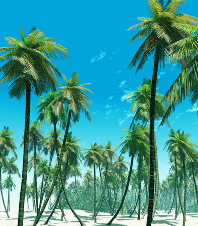Tropical island Stock Photo - 4353976