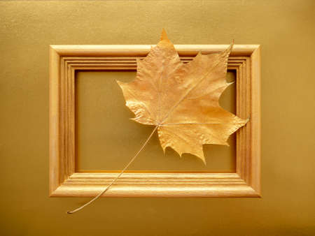 golden autumn. Maple leaf framed on a gold paper background.