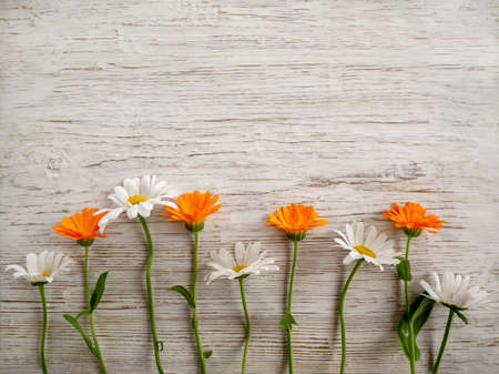 A composition of flowers on a light wooden background with a copy space. Flat styling style, top view, minimalism Banco de Imagens