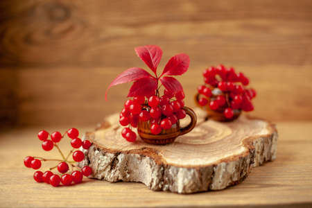 Autumn composition. Red viburnum berries and a red leaf in a clay mug on a wooden sawn tree. The selected sharpness