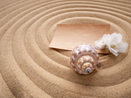 Craft paper letter with a white flower and a shell on the sand in the form of a spiral. The concept of a beach holiday