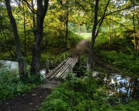 An old wooden bridge over a small river in the summer forest. The trail that goes into the distance