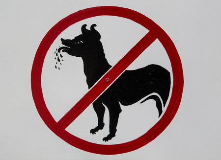 This no dog sign is shown at a museum. Stock Photo - 25969096