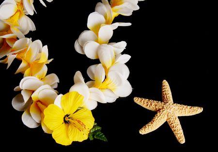 Hawaiian lei and star fish