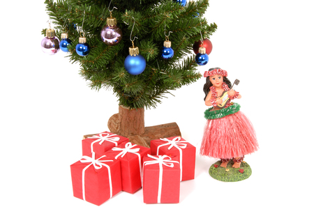 Hawaiian Christmas Stock Photo - 1683845