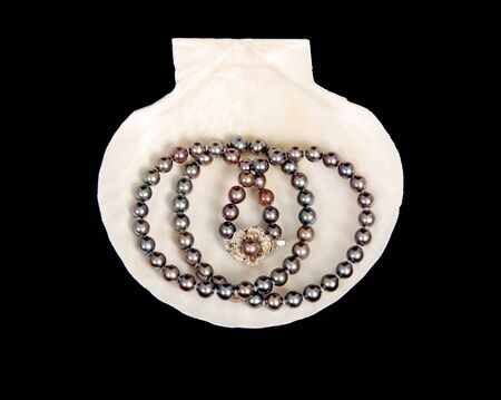 Black pearls on scallop shell